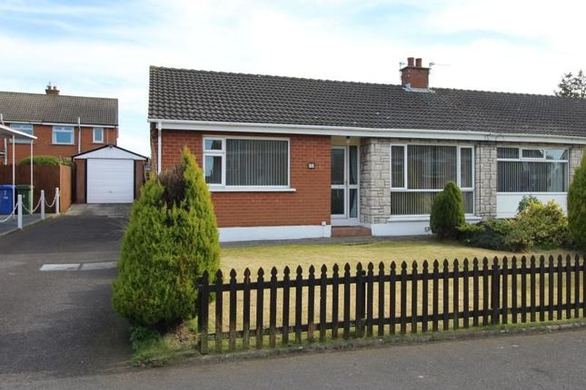 Thumbnail Bungalow to rent in Albany Road, Bangor