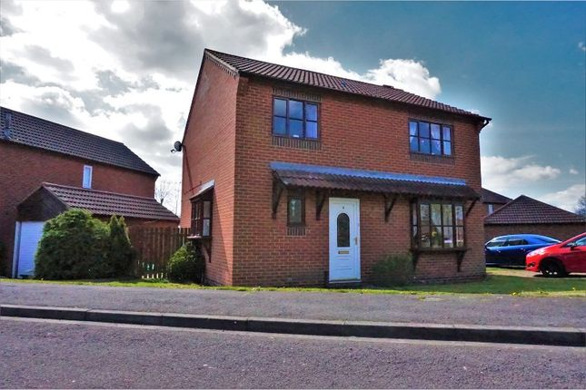 Thumbnail Detached house for sale in Weare Grove, Stockton-On-Tees