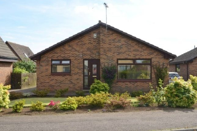 Thumbnail Detached bungalow to rent in Avonmill View, Linlithgow Bridge, Linlithgow