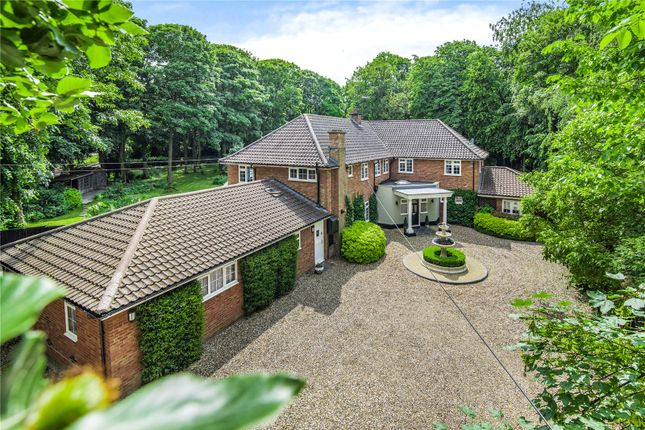 Thumbnail Property for sale in Mount Road, Bury St Edmunds, Suffolk