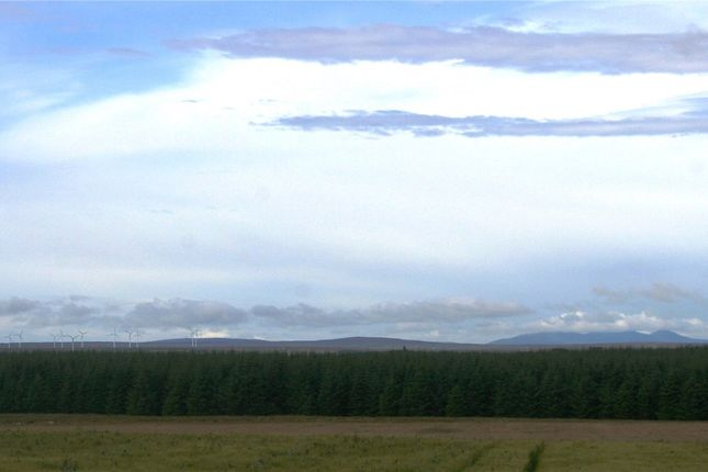 Thumbnail Land for sale in Mireland Forest, Wick, Highland