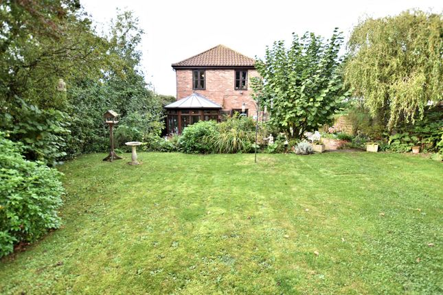 Thumbnail Detached house for sale in Brandon Road, Watton, Thetford