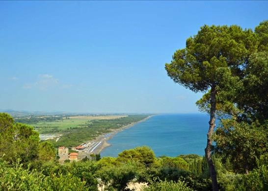 Thumbnail Detached house for sale in Ansedonia, Province Of Grosseto, Italy