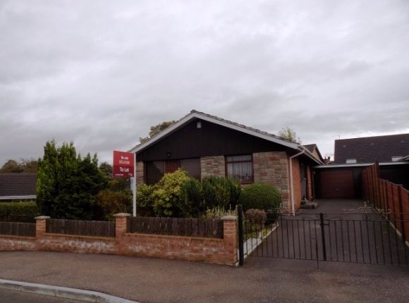 Thumbnail Detached bungalow to rent in Rosemary Drive, Lisburn