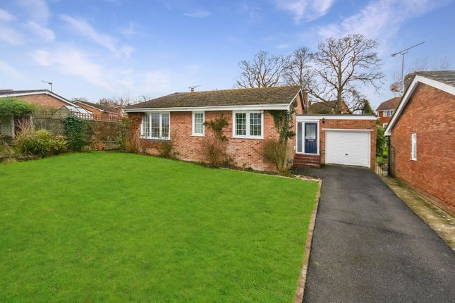 Detached bungalow for sale in Northiam, East Sussex