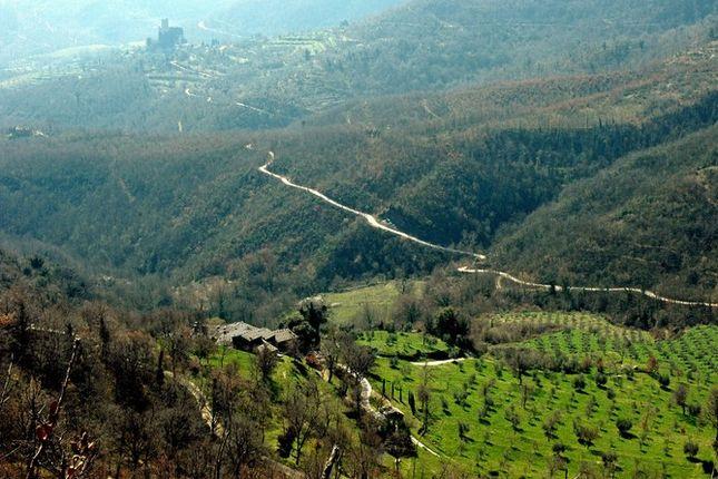 Borgo Di Vagli, Mercatale di Cotona, Tuscany