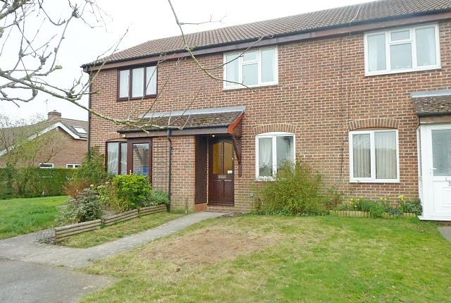 Thumbnail Semi-detached house to rent in Buckingham Road, Petersfield