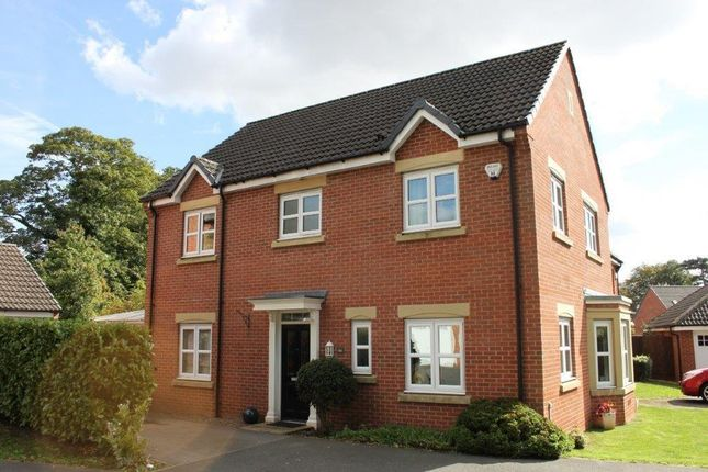 Thumbnail Detached house for sale in Highfields Park Drive, Off Broadway, Derby