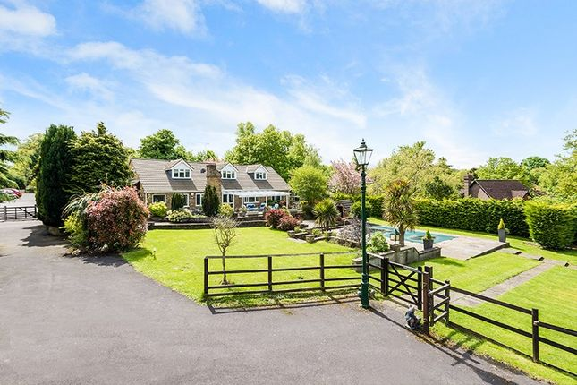 Thumbnail Equestrian property for sale in Headley Road, Epsom