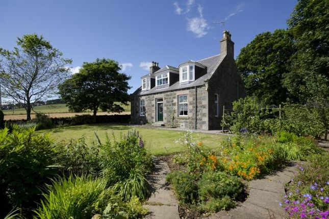 Thumbnail Detached house to rent in Netherton Of Balquhain, Inverurie, Aberdeenshire