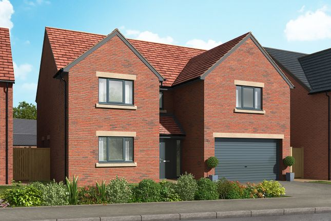 "Thumbnail Detached house for sale in ""The Studley"" at Cautley Drive, Killinghall, Harrogate"