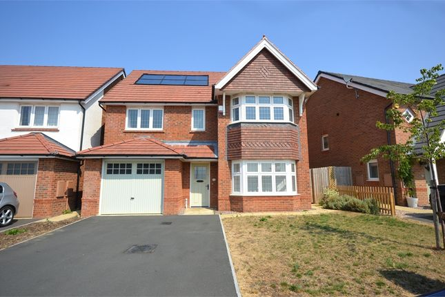 Thumbnail Detached house to rent in Pynkeny Close, Earls Barton, Northampton