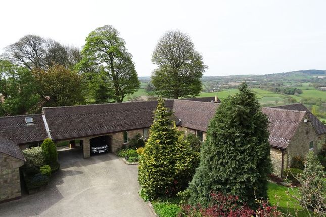 Thumbnail Property for sale in Main Road, Higham, Alfreton, Derbyshire