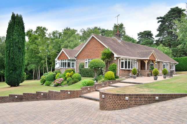 Thumbnail Detached bungalow for sale in Copthorne, West Sussex