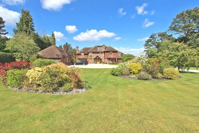 Thumbnail Country house to rent in Sandy Down, Boldre, Lymington