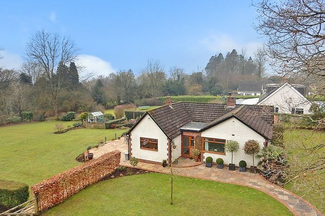 Thumbnail Detached bungalow for sale in Bowl Road, Charing, Ashford