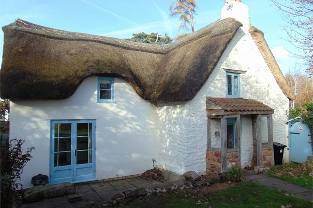 Thumbnail Detached house to rent in The Chalks, Chew Magna, Somerset