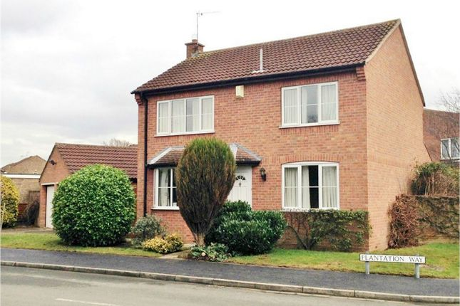 Thumbnail Detached house to rent in Plantation Way, Wigginton, York