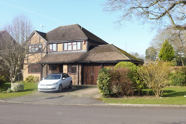 Thumbnail Detached house for sale in Ravenscroft, Hook