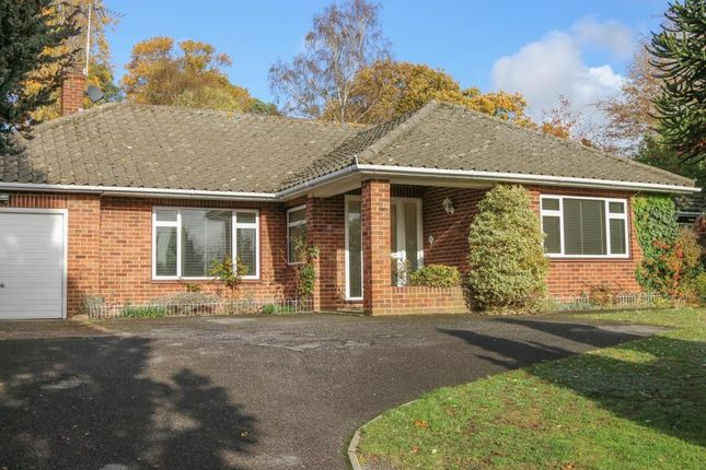 Thumbnail Detached bungalow to rent in Twinoaks, Cobham