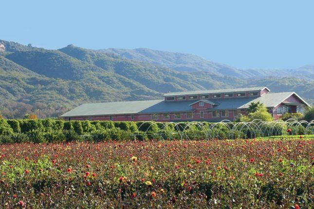 Thumbnail Property for sale in 5300 Foothill Road, Carpinteria, Ca, 93013