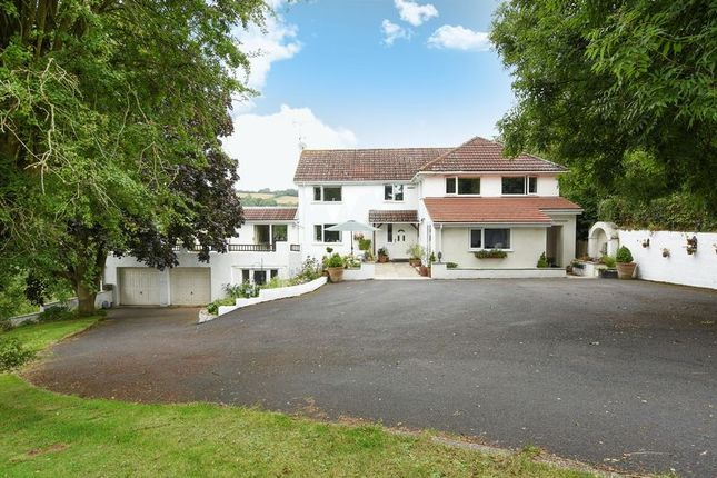 Thumbnail Detached house for sale in Orcop, Hereford
