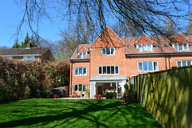 Thumbnail Semi-detached house to rent in Romsey Road, Winchester, Hampshire
