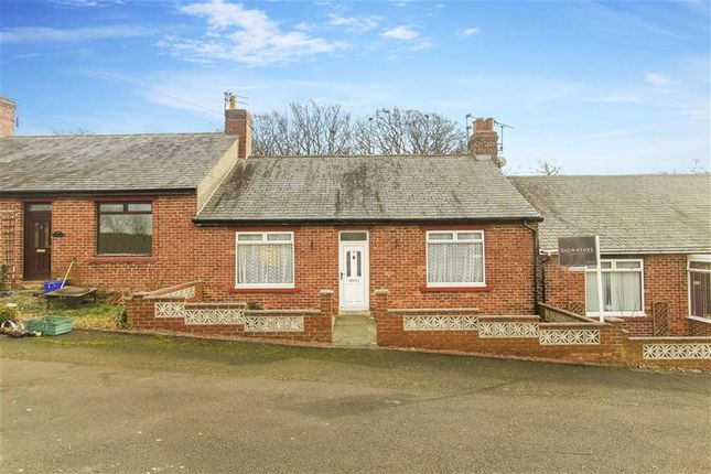 Thumbnail Bungalow for sale in Elmfield Terrace, Hampeth, Morpeth