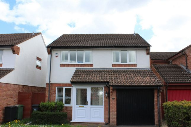 Thumbnail Detached house to rent in Bilberry Grove, Taunton