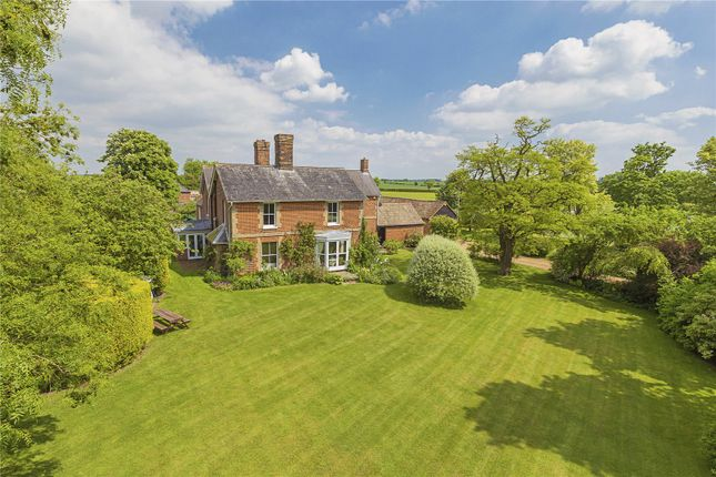 Thumbnail Equestrian property for sale in Eltisley Road, Great Gransden, Sandy, Bedfordshire