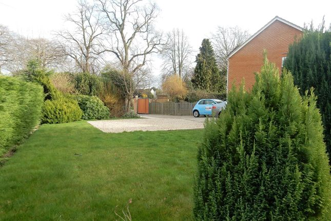 Thumbnail Detached bungalow for sale in Long Lane, Carlton-In-Lindrick, Worksop