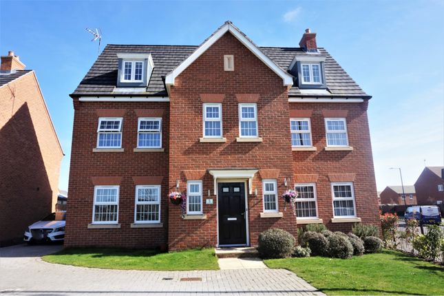 Thumbnail Detached house for sale in Carroll Drive, Warwick