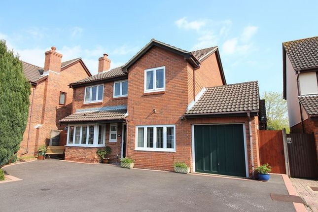 Thumbnail Detached house for sale in Campion Close, Warsash, Southampton