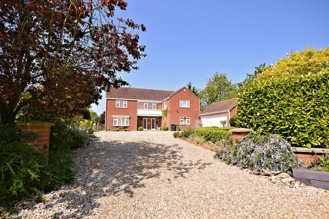 Thumbnail Detached house for sale in Lynn Road, Great Bircham, King's Lynn
