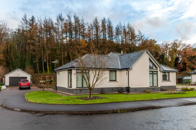 Thumbnail Detached bungalow for sale in Doonhill Woods, Newton Stewart