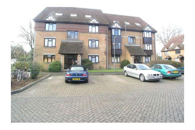 Studio to rent in Dorchester Court, The Grange, Woking