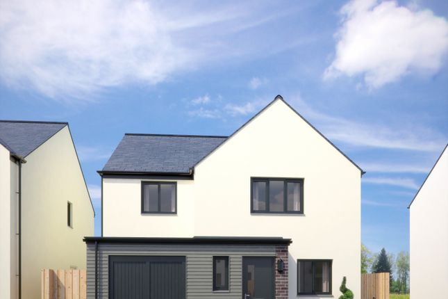Thumbnail Detached house for sale in The Barnard, Fusion, Paignton