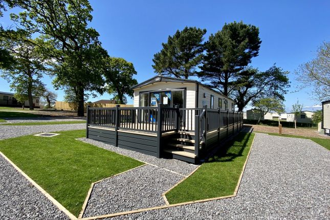 Thumbnail Lodge for sale in Hoburne Blue Anchor Holiday Park, Blue Anchor Bay Rd, Minehead, Somerset