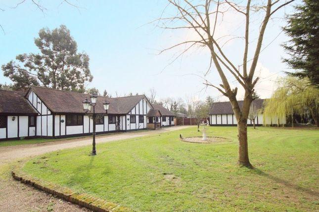Thumbnail Detached bungalow for sale in Black Lake Close, Egham