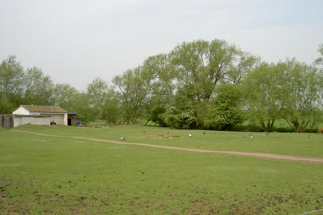 Thumbnail Land for sale in Drayton Road, Sutton Courtenay