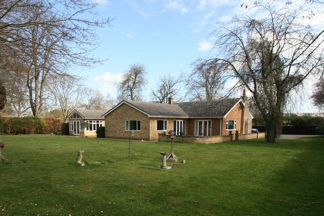 Thumbnail Bungalow for sale in Framley Garth, Dullingham Road, Newmarket