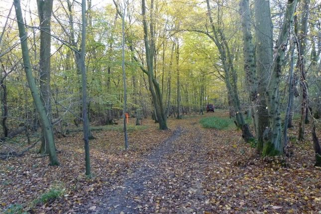 Thumbnail Land for sale in Russ Hill, Dorking