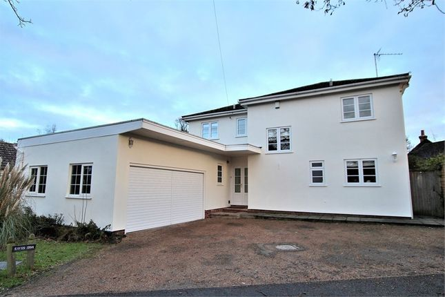 Thumbnail Detached house for sale in Sheering Road, Harlow