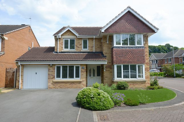Thumbnail Detached house for sale in Marine Drive, Chesterfield