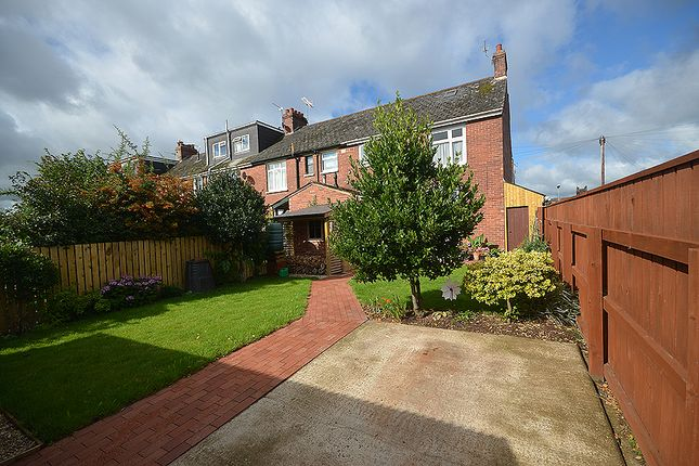 Pamela road exeter ex1 3 bedroom end terrace house for for Terrace exeter