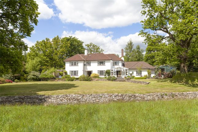 Thumbnail Detached house for sale in Danley Lane, Linchmere, Haslemere, Surrey