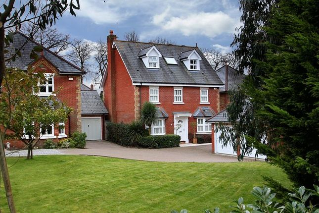 Thumbnail Detached house for sale in Oakland Place, Buckhurst Hill