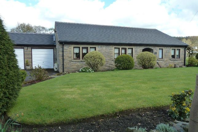 Thumbnail Bungalow to rent in Northcote Road, Langho