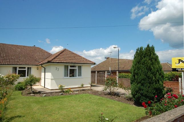 Thumbnail Bungalow to rent in Westmead, Princes Risborough