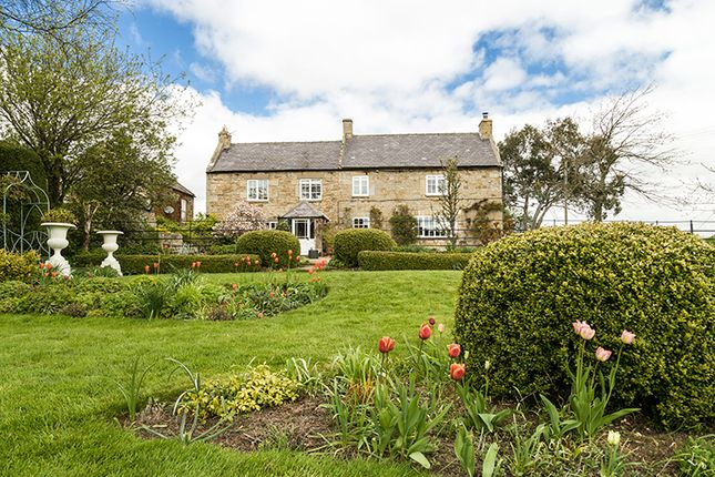Thumbnail Detached house for sale in Pry House, Slaley, Hexham, Northumberland